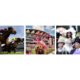 18th June 2015 Ladies Day Ascot Daytrip