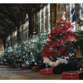 Chester Cathedral Christmas Tree Festival Lights Up Cloisters For A Second Year