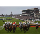 Are you going to the Cheltenham Festival 2015?