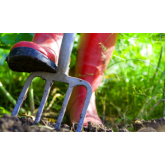 Preparing your garden for Spring