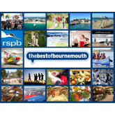 22 things to do in Bournemouth: 11 - 17 September 2015