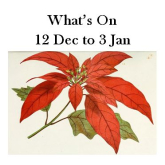 What's On 12 Dec to 3 Jan