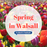 Spring in Walsall