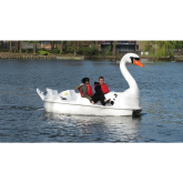 Swans Return to Walsall Arboretum