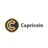The future of money - Vizionary / Capricoin
