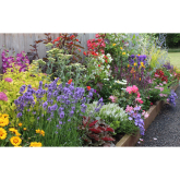Garden on a Roll Borders: a great idea for your garden in Welwyn Hatfield this summer