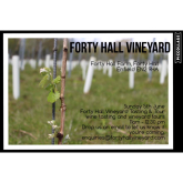 London's Forty Hall Vineyard releases its first wines to the public