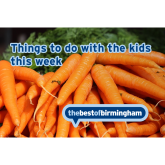 Things To Do With The Kids This Week