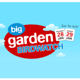 Are you taking part in the Big Garden Bird Watch?