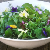 Spring Foraging Events with Suffolk Market Events and Foragers Feast