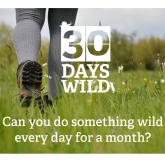Why not do the 30 days Wild Challenge?