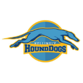 HoundDogs back to Horsebridge