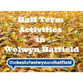 October Half Term Activities in Welwyn Hatfield