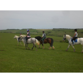 Where to go horse riding in Brighton and Hove?