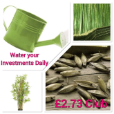 Water Your Investments