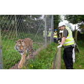UK's leading zoos visit Dartmoor Zoo to develop new gold-standard guidance for zoo health and safety