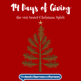14 Days of Giving