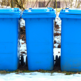 Christmas and New Year Bin Collection Dates in Waverley