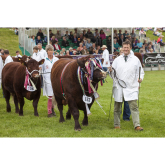 Devon County Show 2018 preview