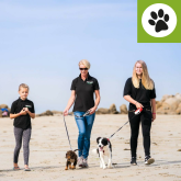 TOP DOG LAUNCH NEW DOG WALKING AND CANICROSS TRAINING SERVICES