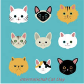 Meow! International Cat Day Falls on 8th August 2018,