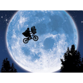 To The Moon and Back  – a wheely important fundraiser!