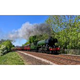 One month until Flying Scotsman arrives in Devon.