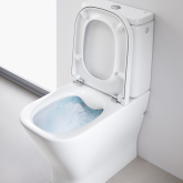 Flushed with Success - Rimless Toilets