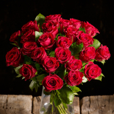 Reliable Roses: Which Roses Are Easiest To Grow?