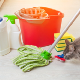 9 Incredible Ways to Stay Clean Even with Pets