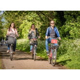 Bike & Go Hosts Free Clean Air Day Wellbeing Event This June
