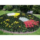 Nonsuch Park wins at the South and South East in Bloom Awards @EpsomEwellBC