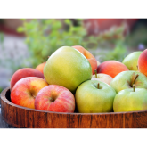 Monday 21st October 2019 is Apple Day