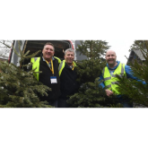 St. Mary's Hospice Christmas Tree Collection