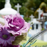 Your Step-by-Step Guide to Registering a Death and Planning a Funeral in the UK