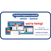 We are hiring - Sales Support Assistant