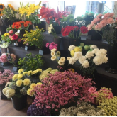 New  Quality Florist opens in Taunton