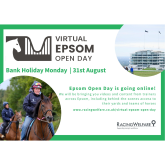 The Racehorse Owners Association To Sponsor Virtual #Epsom Open Day, Now Including Live 'Behind The Scenes' Features  @Racehorseowners @RacingWelfare