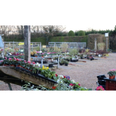 Rainbow Gardening acquires Farm Lane Nursery in Ashtead