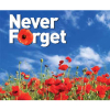 How will you support the 2013 Royal British Legion Poppy Appeal?