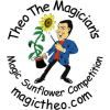 Theo The Magician Magic Sunflower Competition – extended @TheoTheMagician
