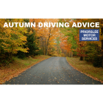 Deer, Dazzle and Falling Leaves – Autumn Driving Advice from Priorslee Motors