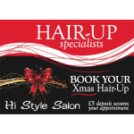Xmas Hair-Ups at Hi Style Salon