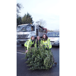 Volunteers needed for Hospice Charity's Christmas tree collection!