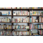 Plans to cut the number of libraries in Walsall