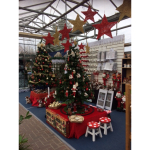 Christmas and Winter Essentials Available in Lichfield