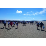 CancerCare's Annual Cross Bay Challenge