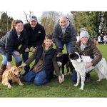 Four-Legged Fundraising in Farnham