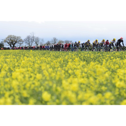 Yorkshire's Biggest Bike Race
