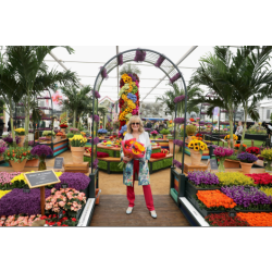 The Chelsea Flower Show 2018 Will be Held on 22nd to 26th May